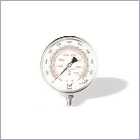 PT1 (All Stainless Steel Test Pressure Gauge)
